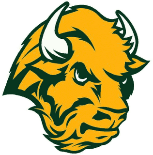 Bison logo - photo#21